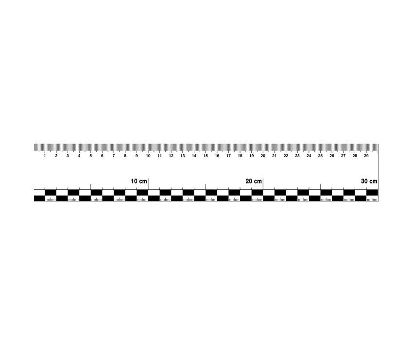 Sticky flexible ruler 30 cm, foil