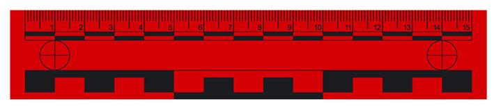 Magnetic ruler, 15 cm, red