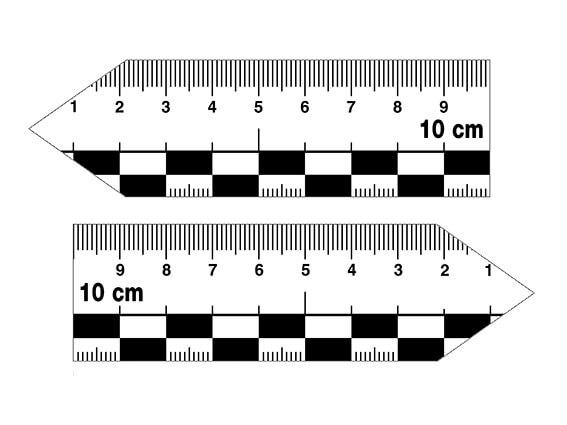 Magnetic pointer ruler set, large, 10 cm